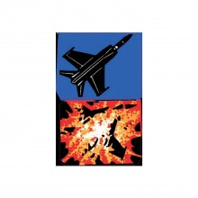 F-14 Tomcat Spinner Decals