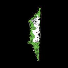 Congo - Plastic 3